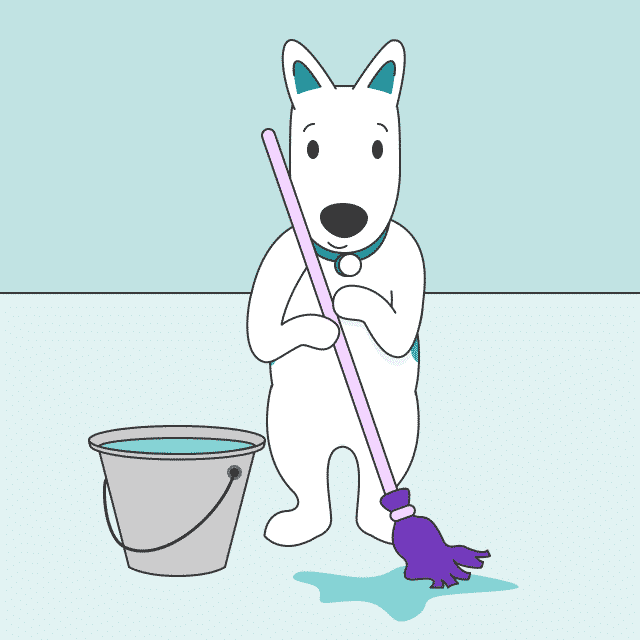 How to Start a Cleaning Business - ZenBusiness