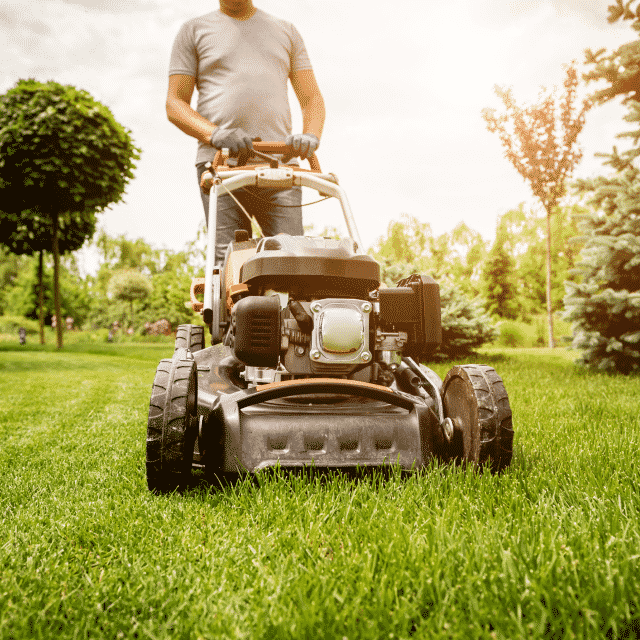 How to Start a Landscaping Business - ZenBusiness